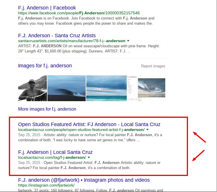 F.J. Anderson LocalSantaCruz.com article showing in Google search results